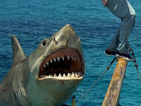 'Jaws: The Revenge' (1987)