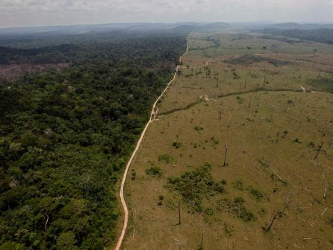 A September 15, 2009 photo shows a deforested area of the Amazon rainforest near Novo Progresso in Brazil's northern state of Para.