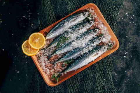 sardinas, sal, pescado