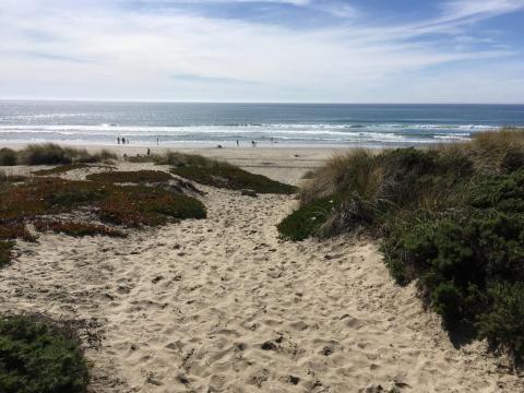 Shoreline view of Monterey Bay, CA from Moss Landing.