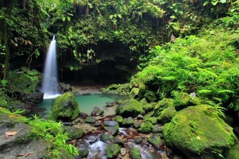 Dominica es un parque de aventuras caribeño con cascadas y playas de arena negra.