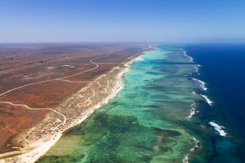 Si busca una alternativa a la Gran Barrera de Coral, experimenta una zona más tranquila para explorar bajo el mar en Ningaloo.