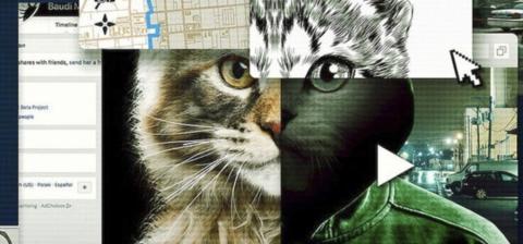 A los gatos, ni tocarlos