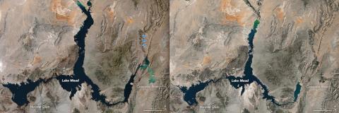 Las imágenes de satélite de la NASA de lado a lado muestran que el lago Mead se está reduciendo: la imagen izquierda se tomó el 16 de mayo de 1984 y la derecha el 25 de mayo de 2016.