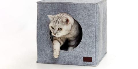 Mejor cama para gatos tipo Ikea