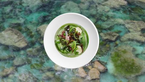 Uno de los platos que han preparado los hermanos Roca para la COP25.