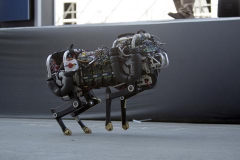 Robot cheetah.