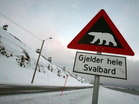 """La señal de advertencia significa """"Se aplica a todo el territorio de Svalbard""""."""