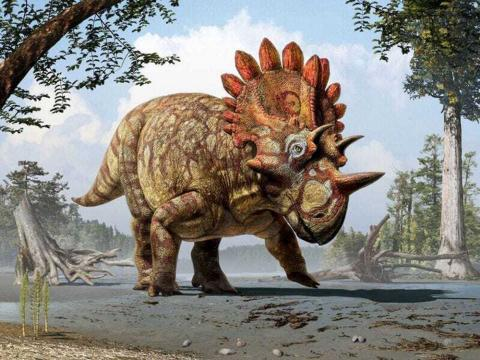 Reconstrucción de un dinosaurio con cuernos llamado Regaliceratops en el Cretácico Tardío.