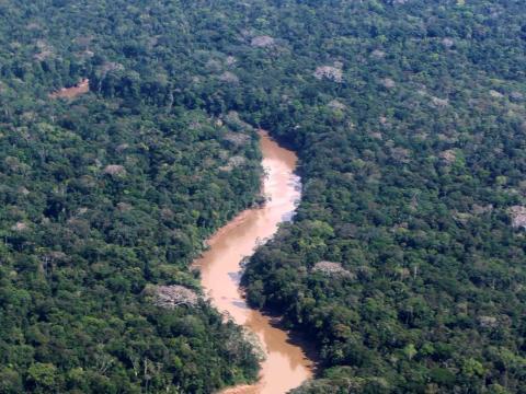 Una vista aérea del río Tiputini en la selva ecuatoriana, el 7 de septiembre del 2016.