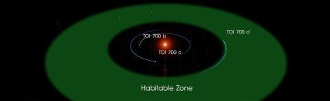 Un gráfico muestra las órbitas de los tres planetas en el sistema estelar TOI 700.