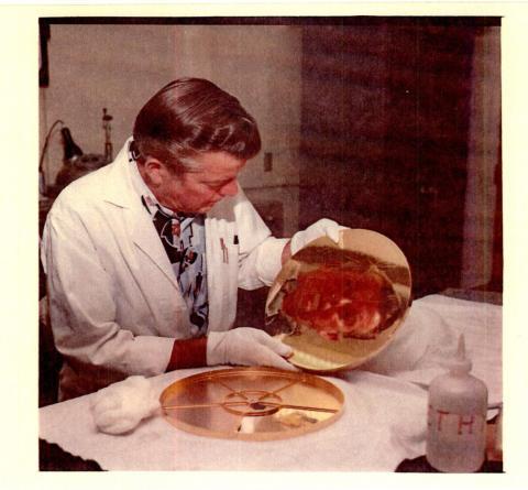 Un ingeniero se mira a sí mismo en el disco de cobre chapado en oro que se lanzaría con la misión Voyager.