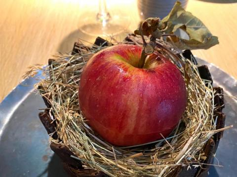Una manzana en el Noma.