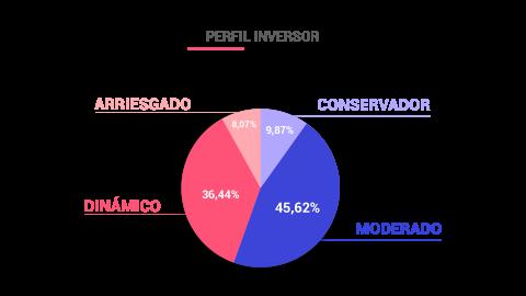 Perfil inversor españoles.