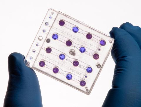 La tarjeta de microfluidos de BioSentinel, diseñada en el Ames de la NASA, se utilizará para estudiar el impacto de la radiación espacial interplanetaria en la levadura.