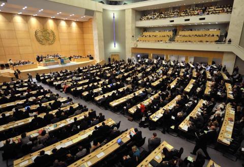 The World Health Organization assembly in Geneva in May 2008.