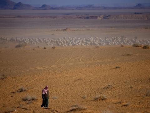 Desierto de Jeddah, Arabia Saudí.