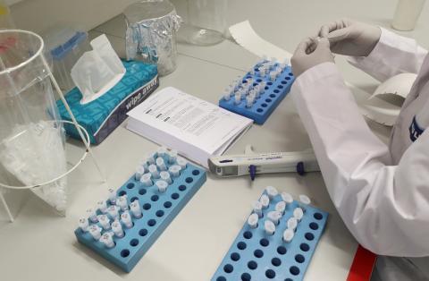 Gilead afirma que probará un prometedor tratamiento contra el coronavirus en 1.000pacientes