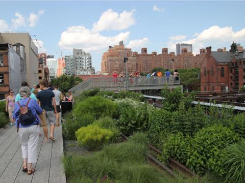 'High Line' en la ciudad de Nueva York es un ejemplo de arquitectura biofílica.