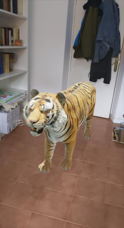 Animal 3D Google