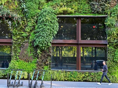 El botánico Patrick Blanc es el creador del 'green wall'.