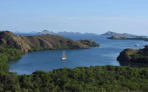 Un bote de turistas visto frente a la costa de la Isla Rinca, al este de Indonesia.