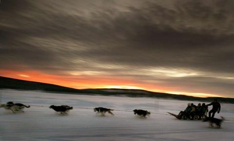 Un grupo de perros tiran de un trineo con turistas por el río congelado Torne, que se encuentra por encima del círculo polar ártico, al norte de Suecia.