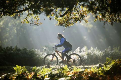 Una mujer montando en bicicleta bajo el sol del otoño en el Richmond Park de Londres.