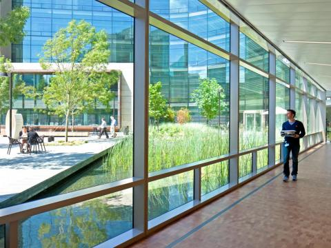"""NBBJ's Montgomery said all plants """"need to be local or locally adaptive."""""""