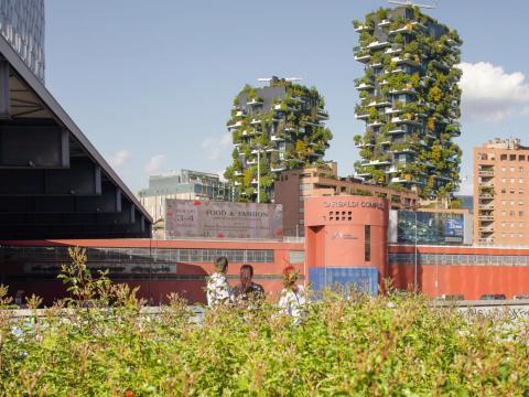 Los edificios forestales en esta foto son residenciales.