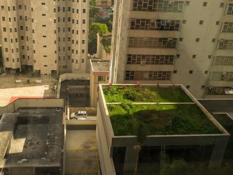 Un tejado ajardinado en Brasil.