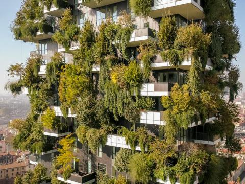 Plants on the outside of the building help reduce smog in the air and regulate indoor temperatures.