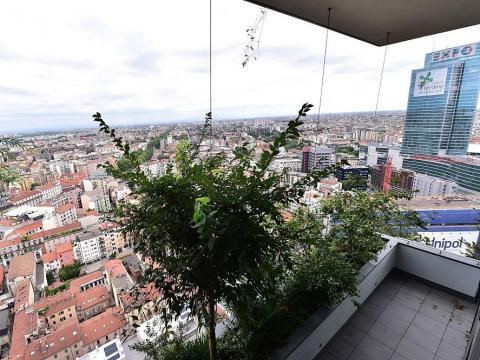 This process began with the vertical forest, where the birds found an environment suitable for nesting.