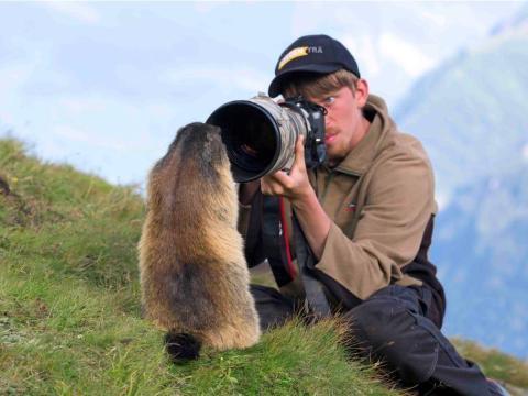 Un fotógrafo de naturaleza haciéndole una foto a una marmota alpina.