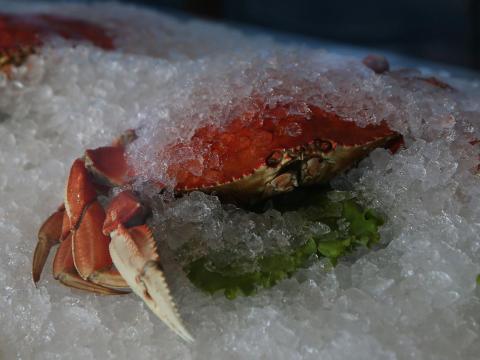Un cangrejo cocido sobre hielo en el restaurante de Alioto.