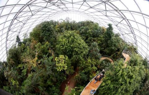 Los visitantes suben por las escaleras colocadas entre las copas de los árboles en el centro de la selva tropical Masoala, en el zoológico de Zurich.