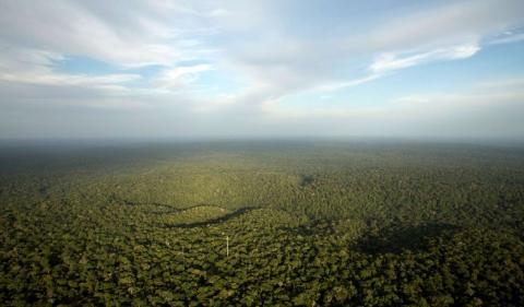 Una vista del Amazonas desde una Torre Alta en Brasil.