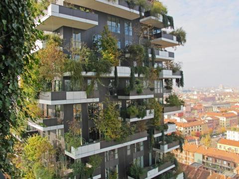 Vista del 'bosque vertical' desde el edificio de al lado.