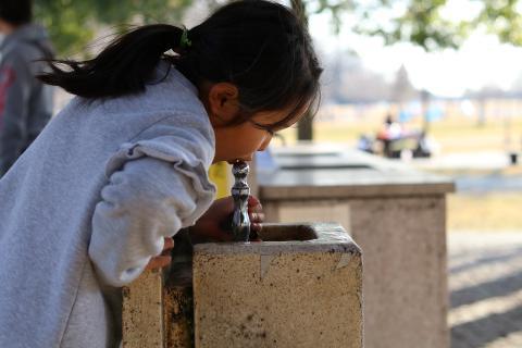 Beber agua de una fuente pública.