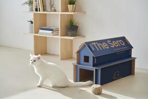 Cajas para gatos de Samsung