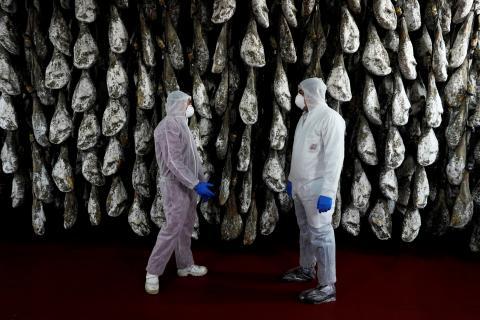Dos trabajadores vestidos con trajes protectores por la pandemia del coronavirus en una bodeja de jamones en Guijuelo (Salamanca).