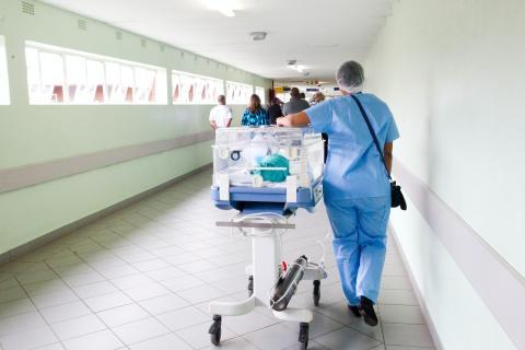 sanitarios, médico, enfermero