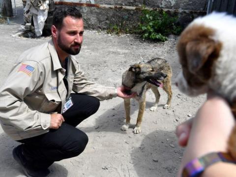 Lucas Hixson, cofundador de CFF, acaricia a un perro callejero cerca de la planta de energía de Chernobyl en 2018.