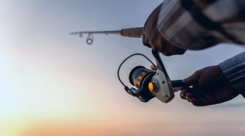 5 cañas de pescar baratas y buenas para novatos