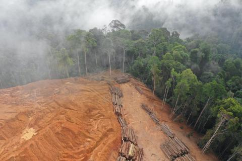 Aerial photo of deforestation in Malaysia rainforest.