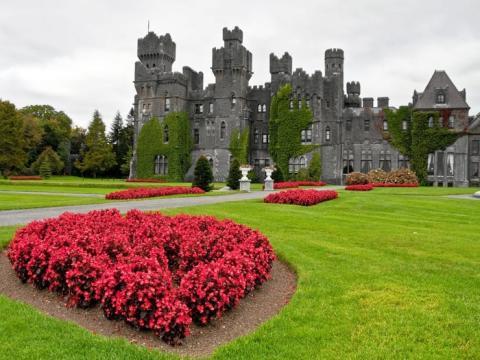 Cuando el castillo no está cerrado, alquila sus 83 habitaciones cada noche.