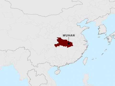 "The first cluster of infections in Wuhan were reported in late December. However, the South China Morning Post reported that ""patient zero"" likely got sick in mid-November."
