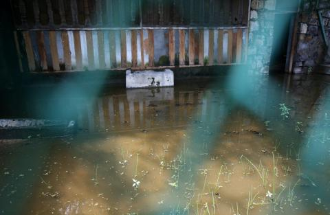 A view of the flooded Delhi Zoo, where Aedes mosquito larvae have been found at various places.