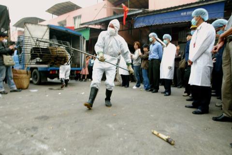Funcionarios del Gobierno de Guangzhou capturan gatos de civeta en el mercado de fauna silvestre de Xinyuan para prevenir la propagación de la enfermedad del SARS, 5 de enero de 2004.