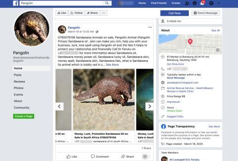 Una de las páginas encontradas por la investigación de Tech Transparency Project investigation en una imagen tomada por la plataforma.